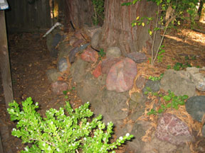 mongrel stone wall before