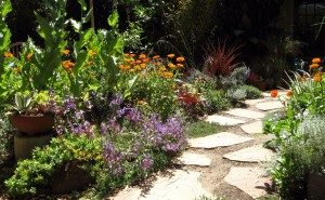 arizona flagstone path and border
