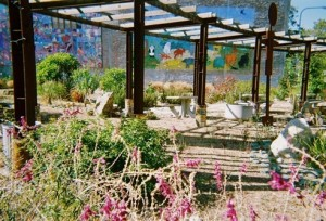 Community Garden, Project Photovoice