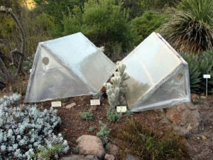 Cold Frame at Tilden