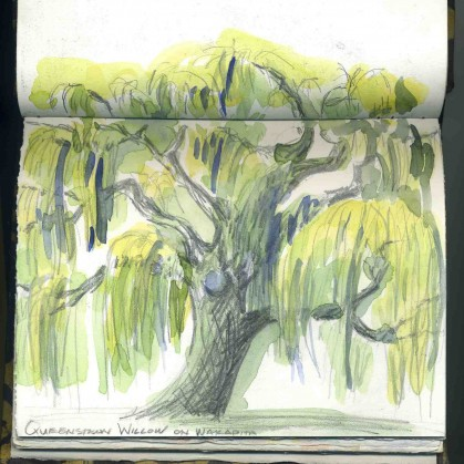 Willow Tree in Queenstown