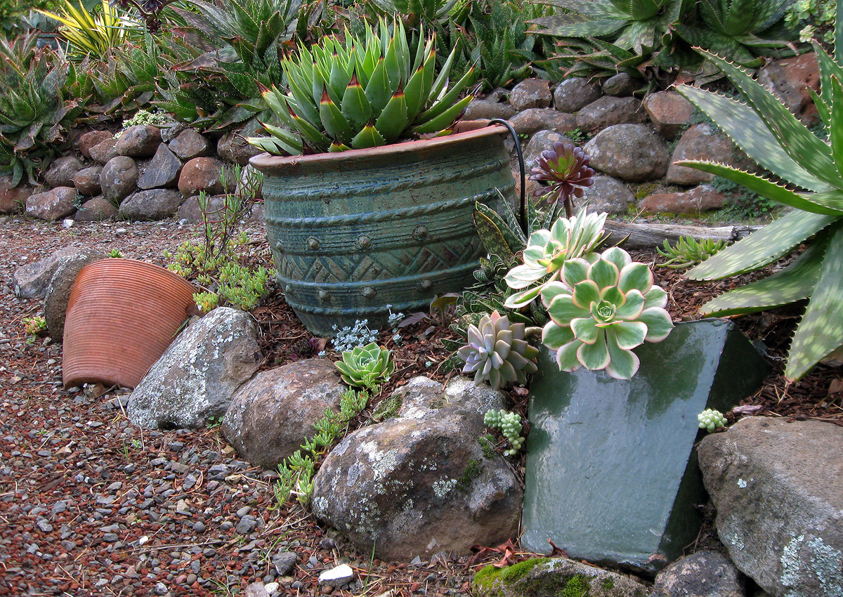 ciao! newport beach: a visit with Camille and her Petite Pots |Rock Garden With Pots