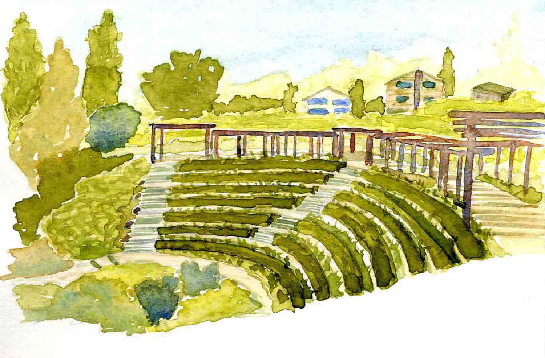 DryStoneGarden Blog Archive Berkeley Rose Garden Watercolors